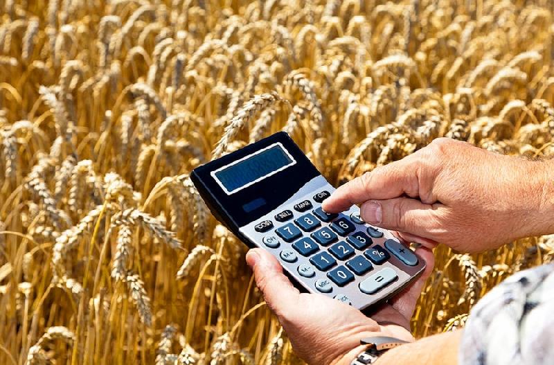 Для чего смоленским аграриям вводят патентную систему налогообложения