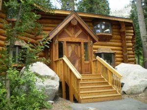 Как уберечь деревянный дом от появления и развития плесени