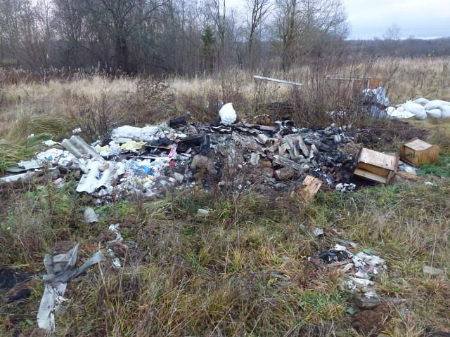 В Смоленской области нашли несанкционированную свалку