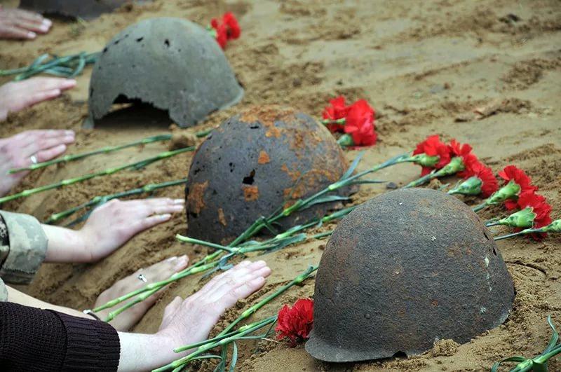 В Смоленской области нашли останки 48 солдат, пропавших без вести во время войны
