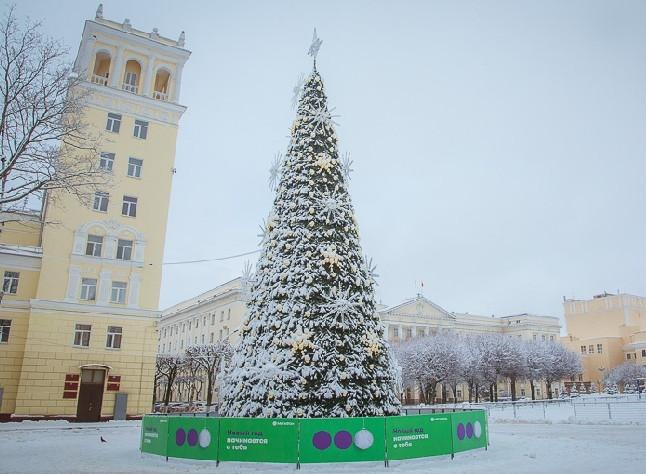 Когда в Смоленске начнут устанавливать новогодние елки