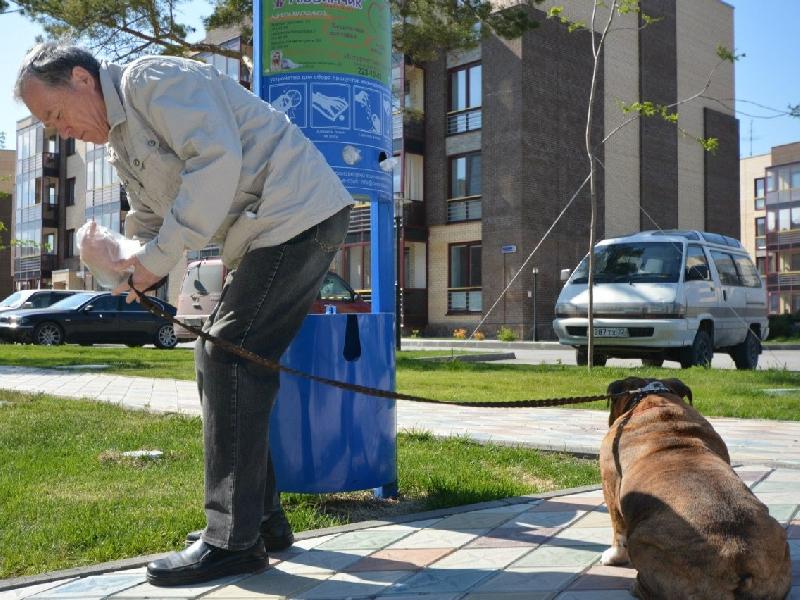 Где в Смоленске установят урны для собачьих экскрементов