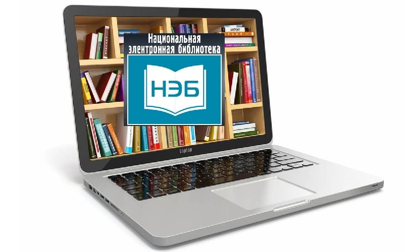 В муниципальных библиотеках Смоленска открыт доступ к Национальной Электронной Библиотеке