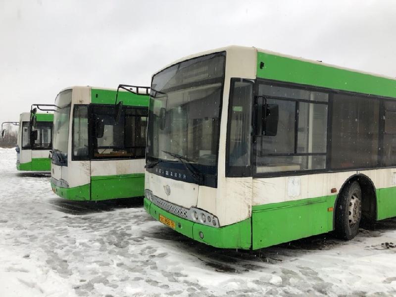 Московские автобусы прибыли в Смоленск