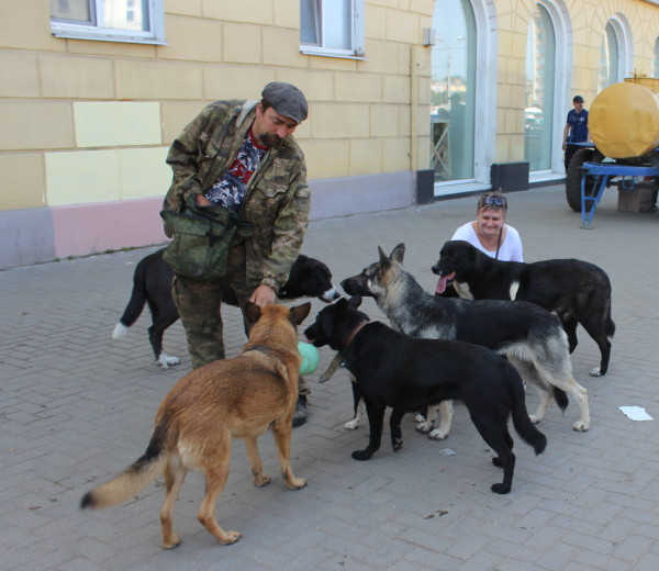 «Защита от зверства». Владельцы смоленских приютов – о законе об ответственном обращении с животными