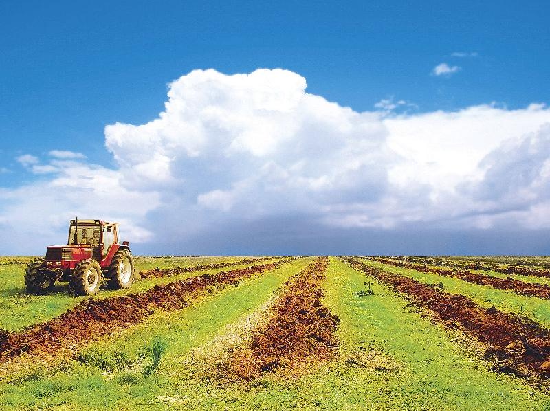 В Смоленской области подвели итоги работы агропромышленного комплекса в 2018 году