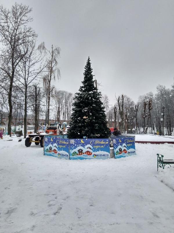 В центральном парке Смоленска установили новогоднюю елку