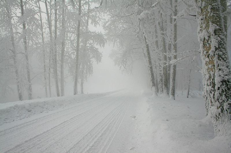 В Смоленской области объявлен «желтый» уровень опасности на 30 января