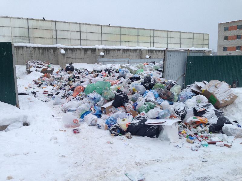 В Смоленске изменился номер «горячей» линии по вопросам вывоза мусора