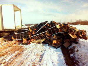 «Первая партия». В Смоленской области «похоронили» более 19 тонн яблок