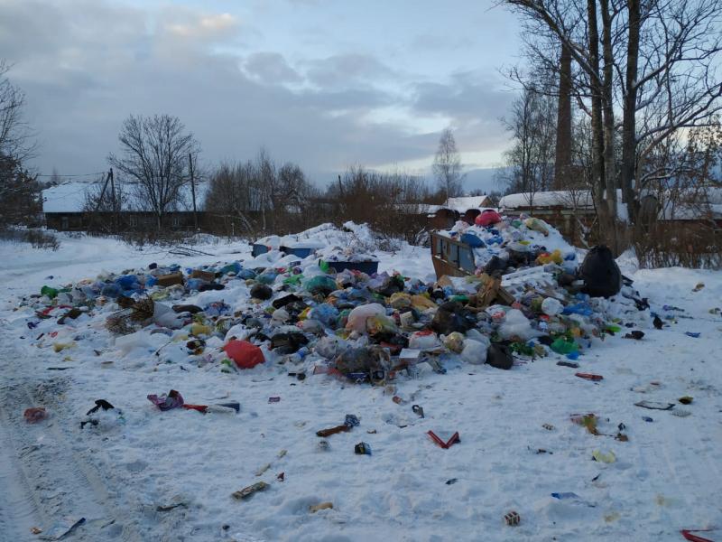 Смоленские микрорайоны зарастают мусором