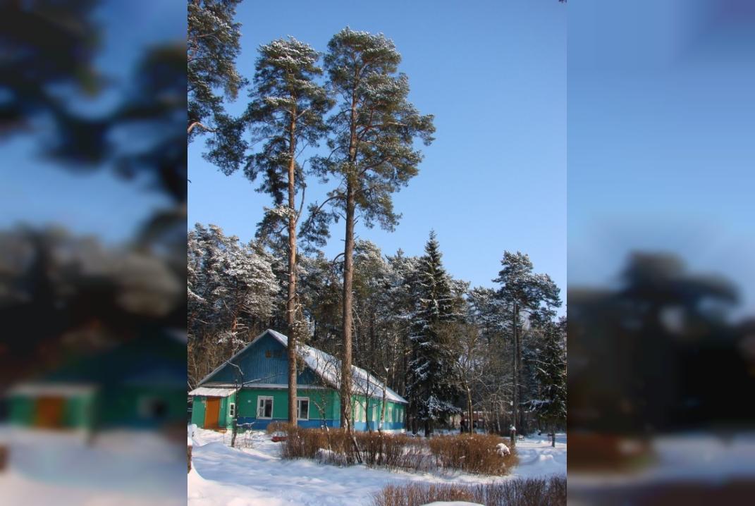 В Смоленске решат судьбу Красноборской санаторно-лесной школы «с привлечением всех заинтересованных сторон»