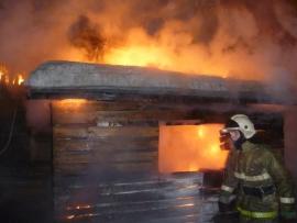 В Смоленской области сгорели более 60 животных
