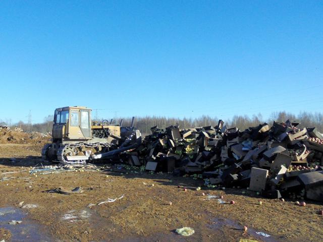 В Смоленской области уничтожили более 54 тонн «санкционки»