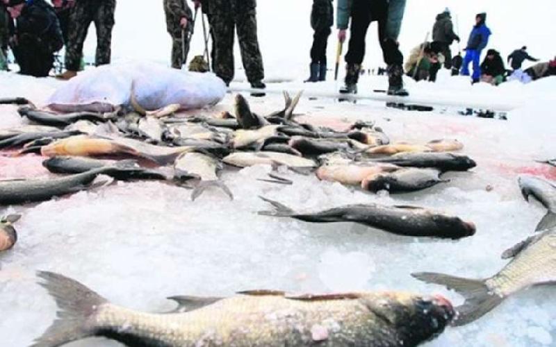 Следователи проверяют информацию о загрязнении реки в Смоленской области