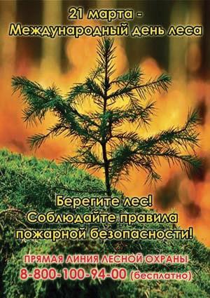 21 марта — Международный день леса