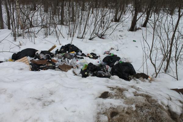 «Весной отходы попадут в Днепр». Активисты ОНФ обнаружили свалки вдоль дороги у озера в Смоленске