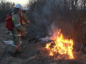 Пожарные-добровольцы ликвидировали 15 возгораний сухостоя