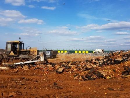 «Клубника, яблоки, лук». 105 тонн продуктов уничтожили под Смоленском