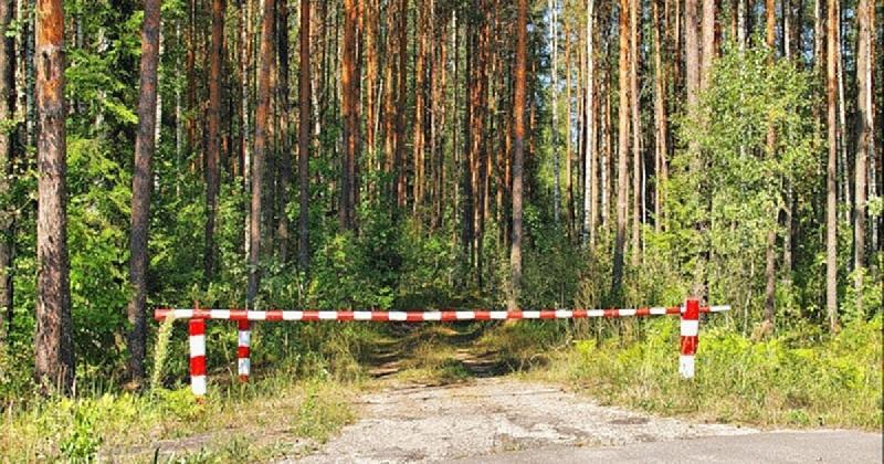 Въезд в леса Смоленского Поозерья перекроют