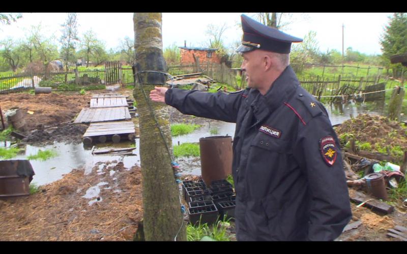 Смоленский полицейский спас… корову