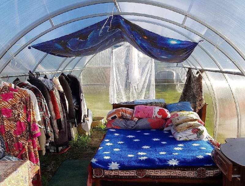 Смоленские пенсионеры месяц живут в теплице