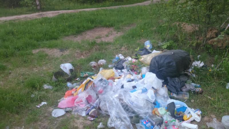 Почему зона отдыха в Смоленске превращается в свалку?
