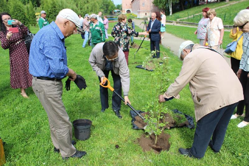 На Аллее мира в Смоленске посадили памятные ивы