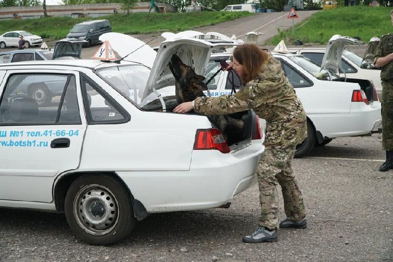 Смолянка с Забавой завоевали «бронзу» на соревнованиях ЦТУ