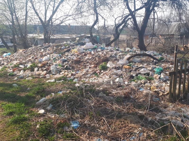 В Смоленской области поселок со всех сторон зарастает мусором