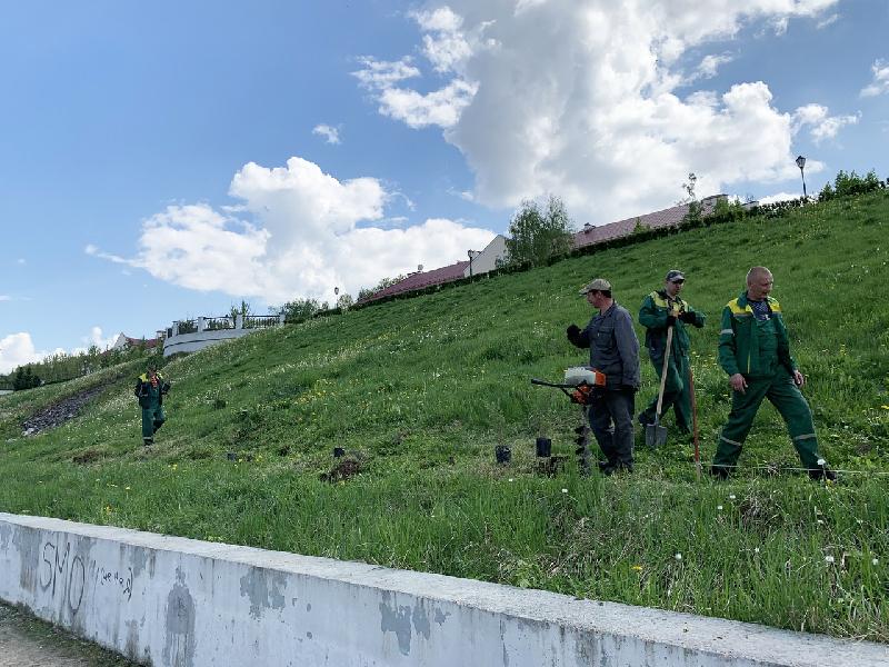 В Смоленске озеленили набережную