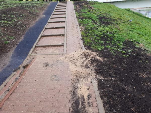 Смоленские активисты ОНФ просят «доремонтировать» парк и дворы