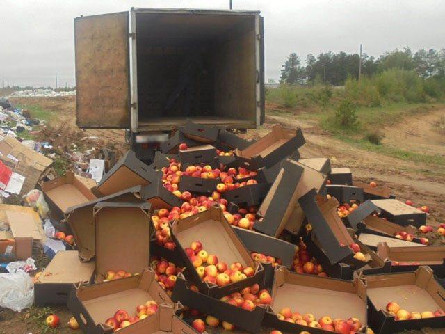 На полигоне под Смоленском захоронили почти 60 тонн фруктов
