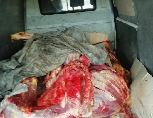 Смоленские таможенники задержали 4 партии опасной провизии