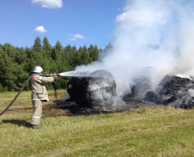 В Смоленской области сгорели почти 3 тонны сена