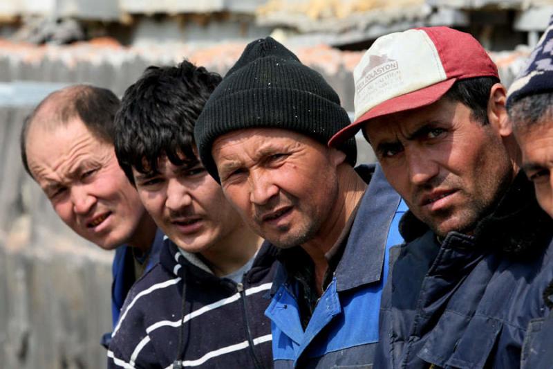 Из Смоленской области выгнали 50 нелегалов