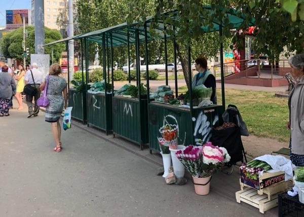 Смоленские пенсионеры смогут продавать урожай на Киселевке