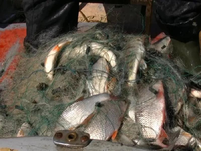 В Смоленском районе задержали браконьеров