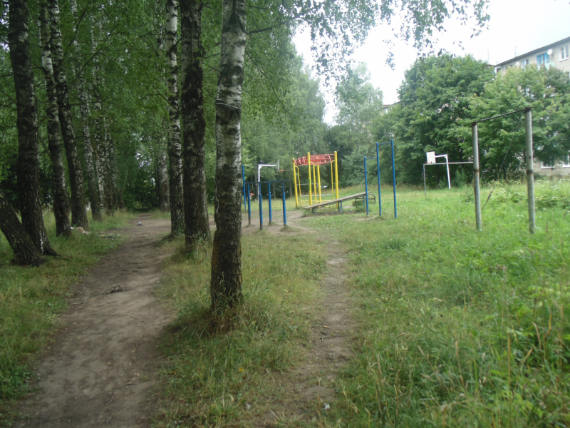 Активисты не дали застроить рощу с детской площадкой в Смоленске