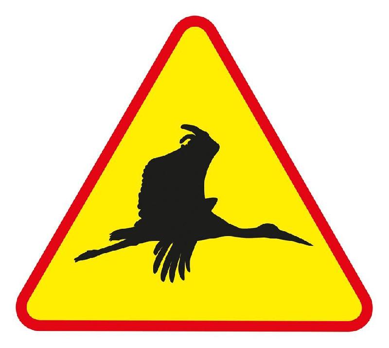 Смоленских автомобилистов предупреждают о летающей опасности