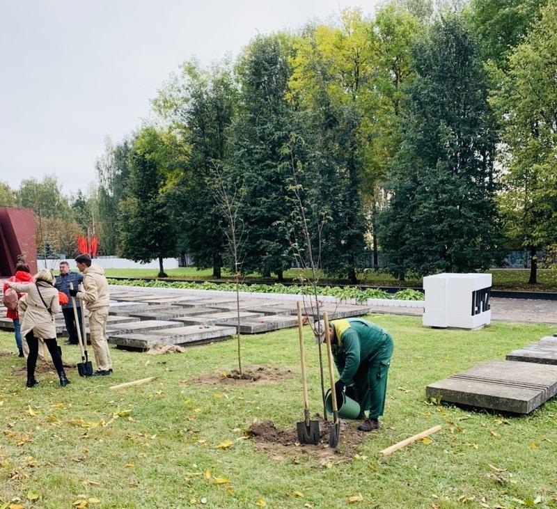 В Смоленске высадили аллею в честь земляков-героев