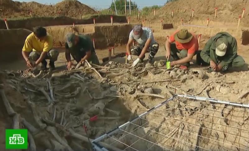 На федеральном канале рассказали об археологической находке в Смоленской области
