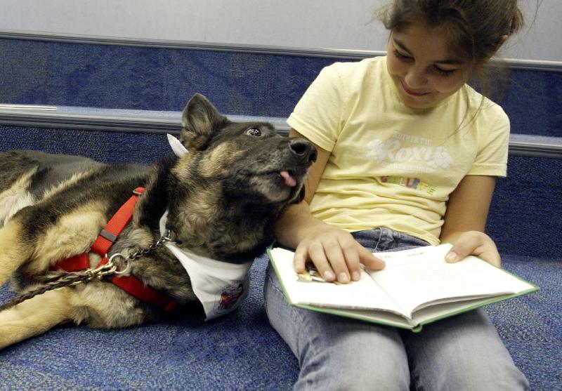 Юным смолянам предлагают почитать… собакам
