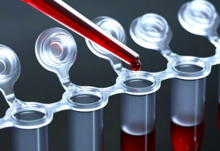 Роль гормона АМГ в организме