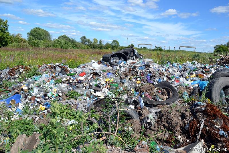 Несанкционированной свалкой в Смоленской области занялась прокуратура