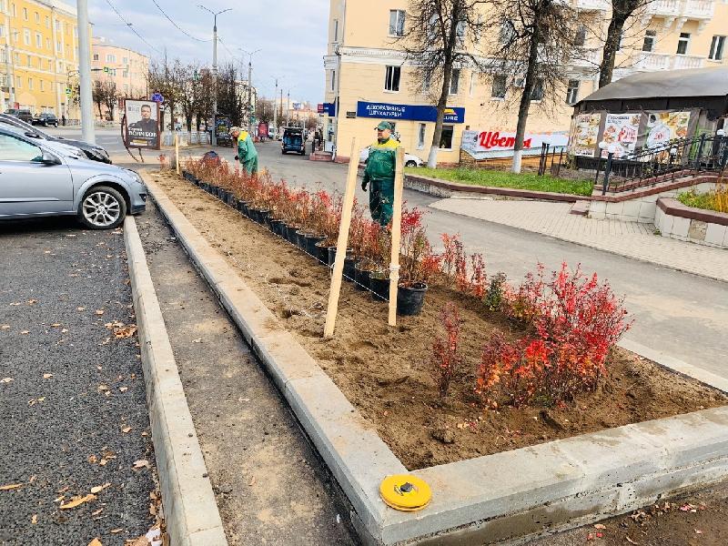 В Смоленске озеленяют проспект Гагарина