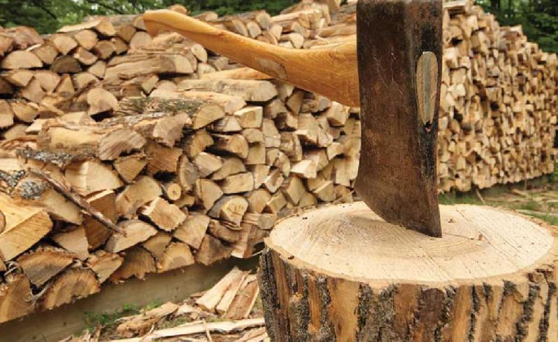 Смолянин может «присесть» на 2 года за дрова