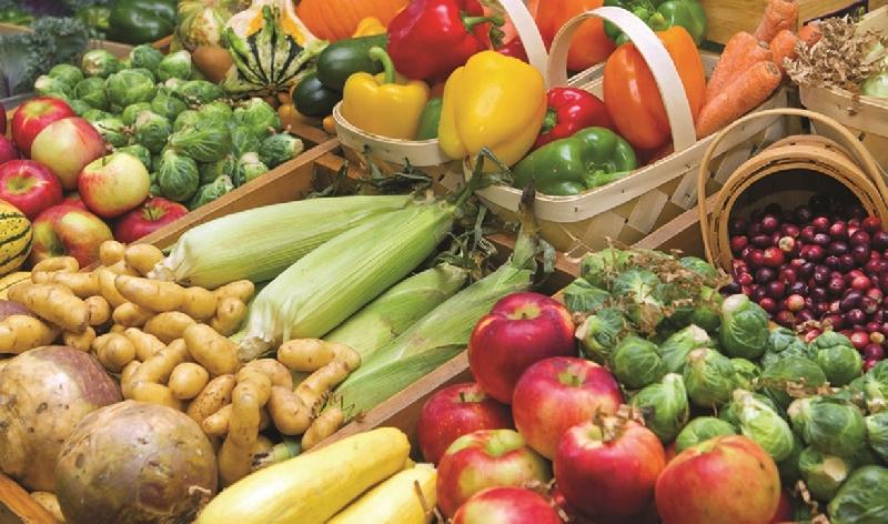 Какой будет сельскохозяйственная ярмарка в Смоленске
