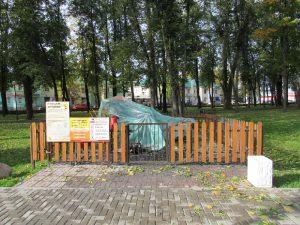 В Смоленской области задержали поджигателя аттракциона