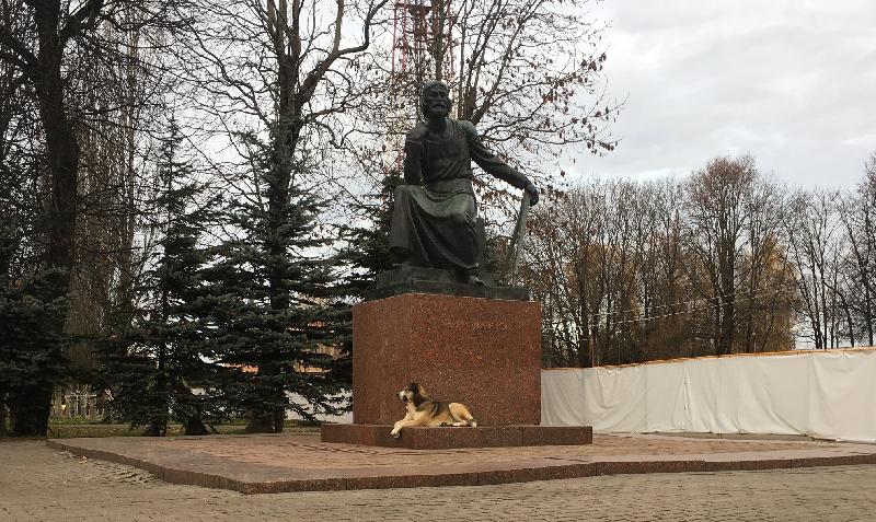 «Что грозит виновному?» В полицию поступило 8 заявлений, требующих расследовать гибель самой известной собаки Смоленска